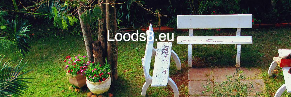 loods8.eu